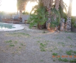 This is how the backyard looked when we first moved in