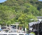 Kyoto hils